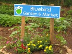bluebird market0606 281
