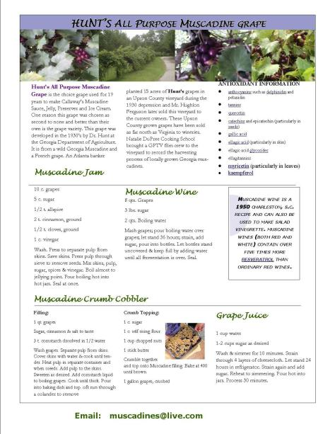 best muscadine page 1