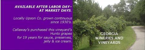 landers vineyard