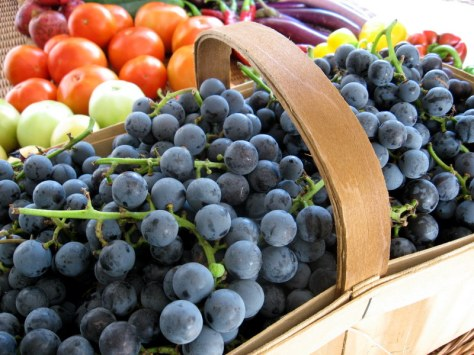 1-Concord Grapes in today's shares.