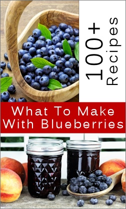 100+ things to make with blueberries