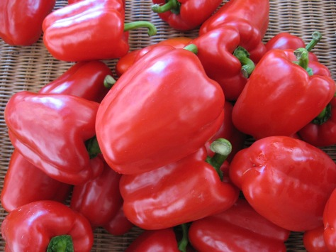 griffin red peppers sweet summer