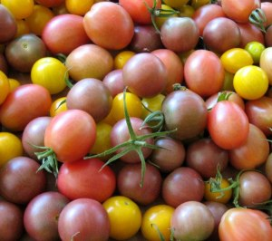 July 4, 2012 Heirloom Cherry Tomatoes
