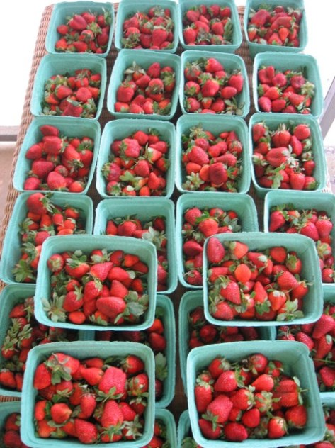 pike co strawberries