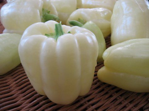 white 1-peppers bluebird greenhouse