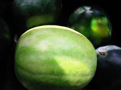 desert king yellow meat watermelon 2014 june
