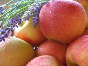 lavender and apples