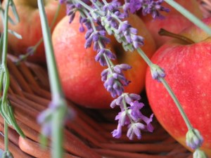 lavender with apples